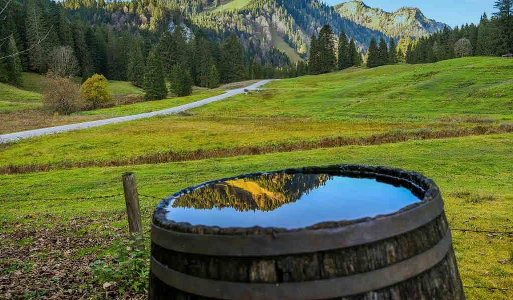ウイスキー樽の画像