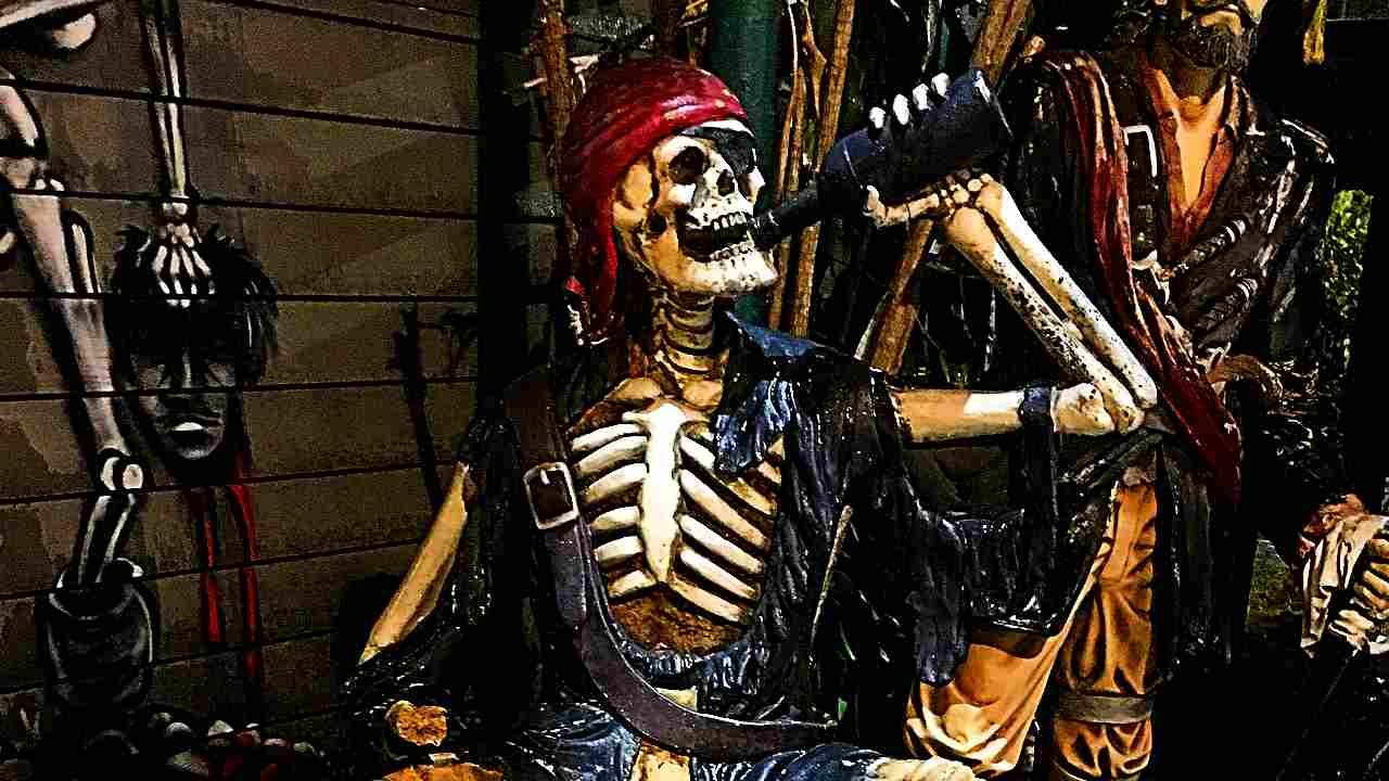 骸骨がラムを飲んでいる画像