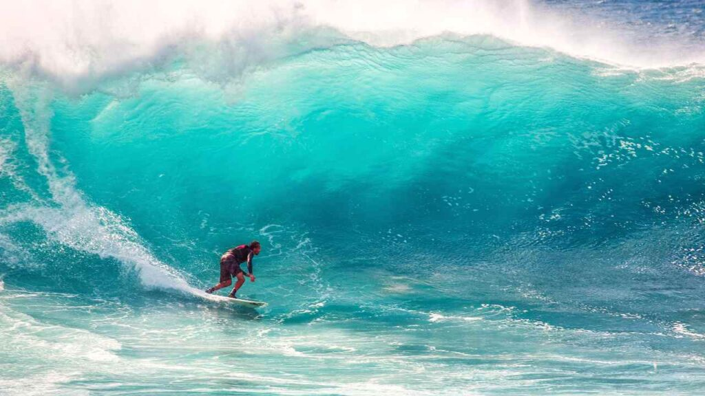 海でサーフィンしている人の画像